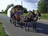 Kindertag auf dem Eselhof