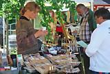 Ostseebad Prerow: Kunstmarkt